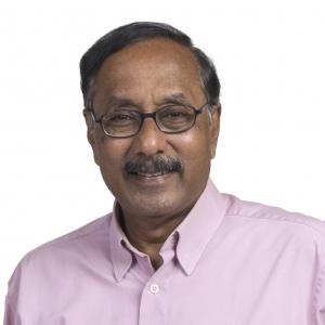Dr Natarajan Varaprasad  (Member)