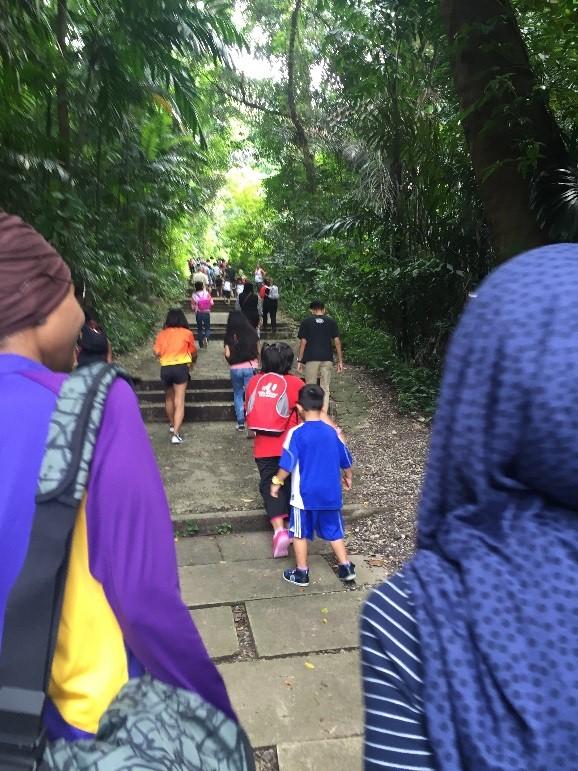 mentors-and-mentees-lets-go-trekking